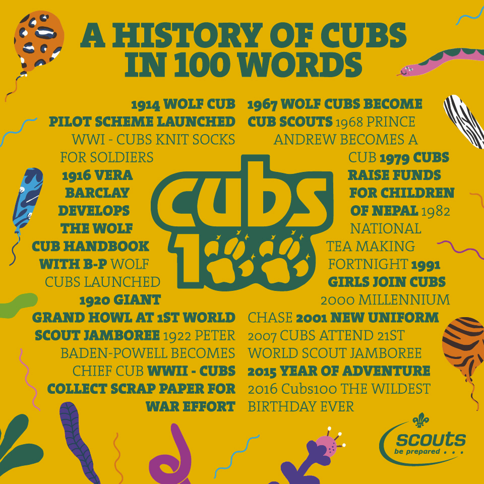 cubs100-a-history-of-cubs